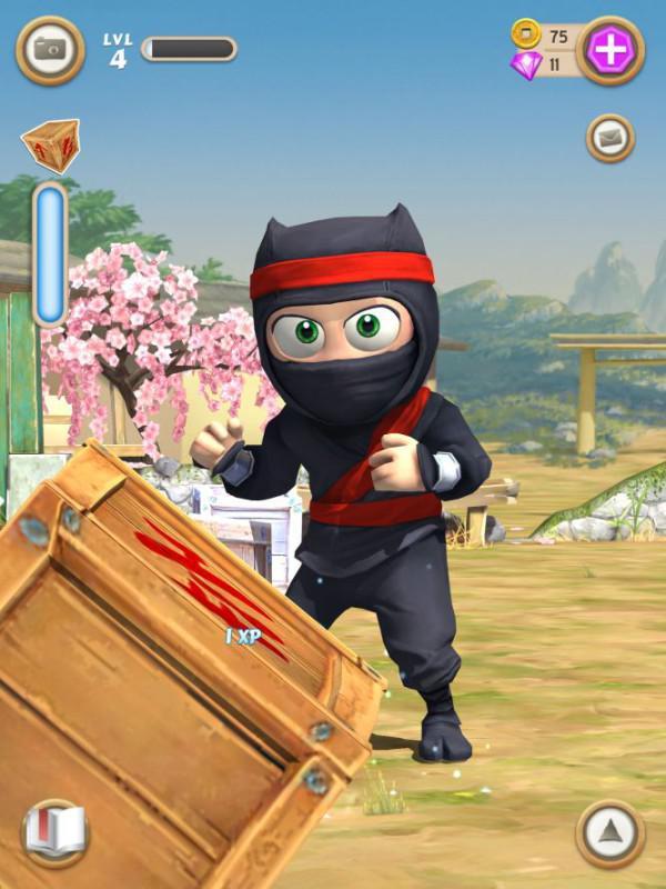 clumsy-ninja4