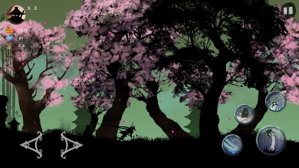 Ninja Arashi - tyhle růžové keře vám vezmou dech